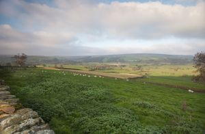 view from danby castle 1 sm.jpg