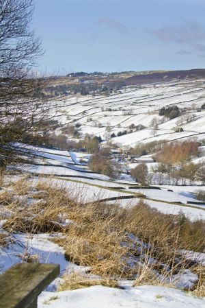 haworth moor to stanbury feb 2012 sm.jpg