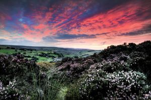haworth sunset 1 sm.jpg