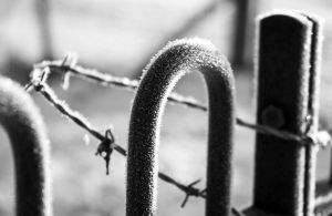 asylum railings bw sm.jpg