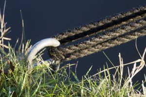 scholar green canal rope 1 sm.jpg