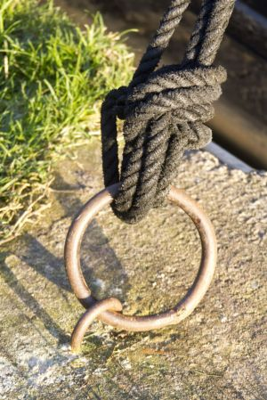 scholar green canal rope sm.jpg