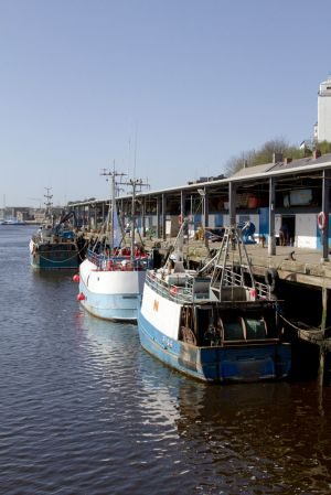 walkworth grange  fish quay 9 sm.jpg