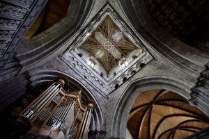 st davids cathedral roof sm.jpg