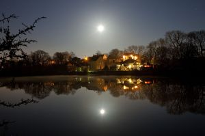 carew moonlight sm.jpg