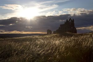 whitby abbey july 2015 sm.jpg