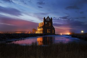 whitby abbey pond jan 2013 1 sm.jpg