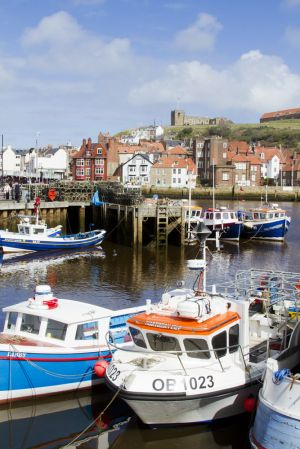whitby harbour 111 sm.jpg
