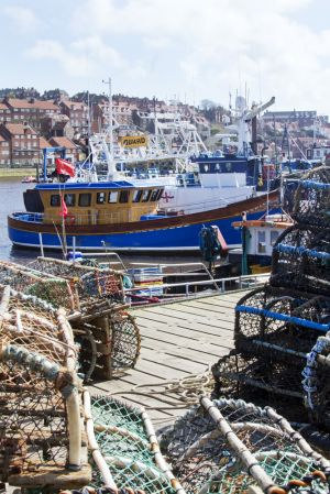whitby harbour april 13 2012 6 sm-c98.jpg
