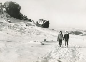 cow and calf rocks 1962 sm.jpg