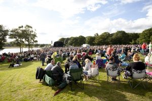 tatton park crowd 1 sm.jpg