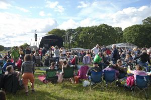 tatton park crowd 2 sm.jpg