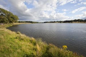 tatton park lake 1 sm.jpg