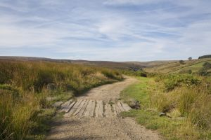 haworth moor rooute to top withens 5 sm.jpg
