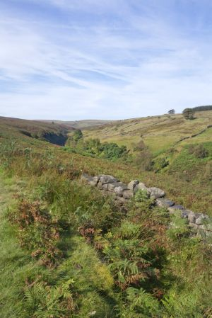 haworth moor rooute to top withens 6 sm.jpg