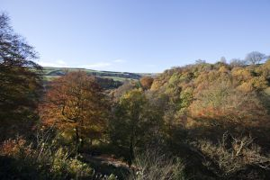 luddendenfoot autumn 1 sm.jpg