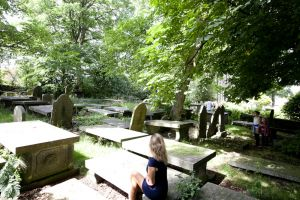 haworth comparison image graveyard 2 sm.jpg