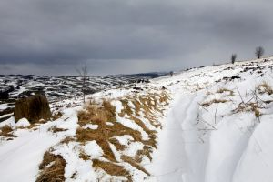 haworth moor march 2013 sm.jpg