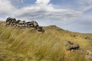 haworth moor rooute to top withens 1 sm.jpg