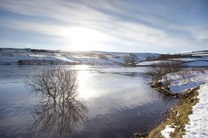 ponden res haworth moor december 6 2010 image 1 sm.jpg
