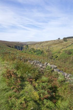 haworth moor rooute to top withens 6.jpg