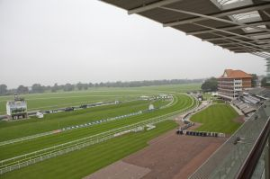 york racecourse 1.jpg