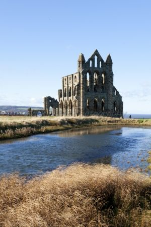 goth 12 whitby abbey 2.jpg