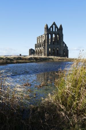 goth 12 whitby abbey 3.jpg
