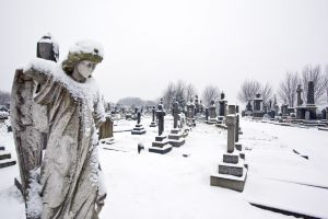 undercliffe angel january 7 2011 image 2 sm.jpg