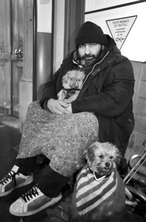 living on the street paris dog sm.jpg