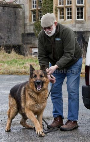 one man and his dog denbigh 1 sm.jpg