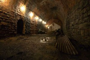 tunnel_of_doom_sm.jpg