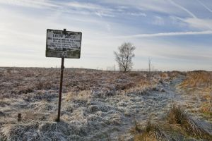 brow moor haworth 1 sm.jpg