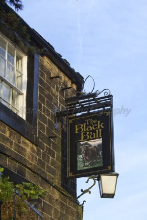 haworth black bull sm.jpg