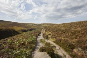 haworth moor september route to top withens 2012 sm.jpg