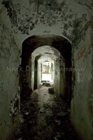 Tunnel_Vision_sm.jpg