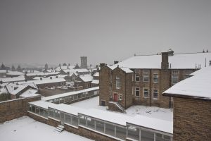 high roydsview from  male chroic block december 27 2010 image 1 sm.jpg