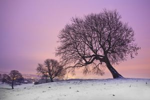 rombalds moor menston sunset december 27 2010 sm.jpg