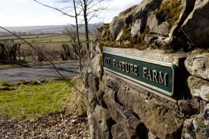 barnard castle ox pasture farm 3 sm.jpg
