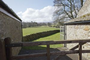 barnard castle ox pasture farm 32 sm.jpg