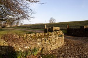 barnard castle ox pasture farm 8 sm.jpg