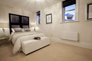 chevin plot 252 showhome 24 sm.jpg