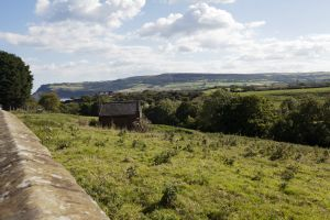 gorgeous cottages Vale View 57 sm.jpg