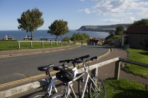 Gorgeous cottages robin hoods bay 21 sm.jpg