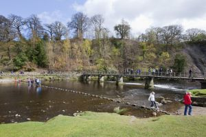 bolton abbey april 15 2012 2 sm.jpg
