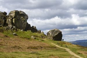cow and calf rocks april 2012 sm.jpg