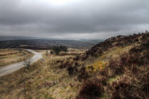 haworth moor march 2016 sm.jpg