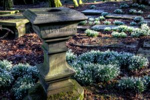 haworth cemetery 1 2016 march 1 sm - Copy.jpg