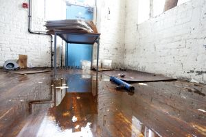 harris mill great horton bradford feb 21 2011 image 6.jpg