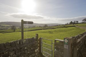 _gorgeous nidderdale local 6.jpg